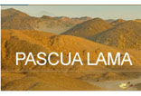 Pascua Lama