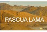 Pascua Lama